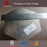 Barra esagonale dell'acciaio inossidabile (CZ-HS01)