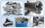 Longue vie Span Diamond Core Drill Segment pour Concrete