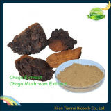 Polvere naturale pura dell'estratto del fungo di Chaga