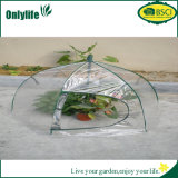 Onlylife Eco-Friendly 튼튼한 Foldable 정원 온실