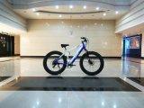 Bici elettrica grassa con '' rotella 26