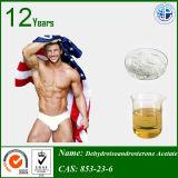 Ormone steroide 853-23-6 Dehydroisoandrosterone 3-Acetate di 99%