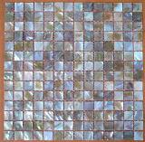 حدود Mosaic من Shell (YB2002)