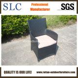 余暇の椅子/高く背部椅子または屋外の庭の藤の家具(SC-B7015-1)