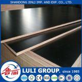 madeira compensada do molde de 12mm do grupo de China Luli