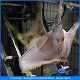 Strumentazione di macellazione delle pecore dalla Cina