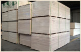 6/9/15/12/18mm Abedul UV/pino/Poplar/Maple comercial para la decoración de muebles de madera contrachapada/