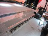 ganz eigenhändig geschriebes Stadiums-ganz eigenhändig geschriebe Folie der Bildschirmanzeige-3D/Musion Eyeliner-Hologramm-Bildschirmanzeige