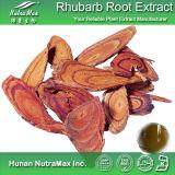 Порошок выдержки Rehmanniae корень 100% естественный (флавон 1%-5%)