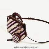 바느질 줄무늬 여자 손 부대 혼합 색깔 핸드백