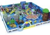 2017人の多機能の城の主題の子供の屋内運動場のいたずらな城(TY-14009)