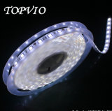 5050 60LED/M alta luz de tira flexible brillante del LED