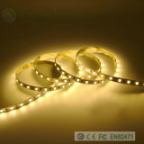 Alta qualità 5630/5730 di indicatore luminoso esterno dell'interno dell'indicatore luminoso della corda del LED