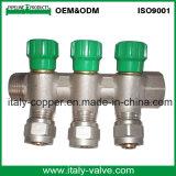 OEM&ODMの品質の黄銅は造った双方向多岐管(AV9068)を