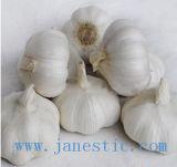 Chinois rouge fraîche Normal/blanc pur de l'ail