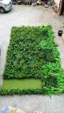 수직 정원 Gu1481963210922의 고품질 인공적인 플랜트 그리고 꽃