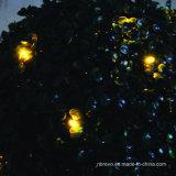 Indicatore luminoso solare dell'albero del giardino del PC 2 (RS116)