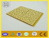 PVC Panel сбывания для Ceiling и Wall Decoration Hot 2014