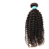 Hot 8A Malais Kinky Curly Virgin Hair 4 Bundles Rosa Produits pour cheveux Malais Virgin Hair Afro Kinky Curly Weave Cheveux humains