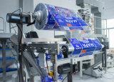 塩、砂糖、小麦粉、チリパウダーのための自動粉のパッキング機械