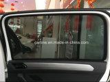 Parasole nero dell'automobile di colore