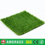 عشب يرتّب و25 [مّ] أربعة لون مرج