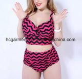 女性のとサイズのストリップのビキニの水泳の摩耗のための大きいサイズの水着
