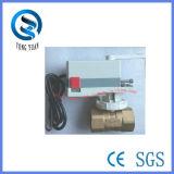 valvola a sfera d'ottone elettrica di controllo analog di 24VAC 1-1/2''(BS-878 DN40)