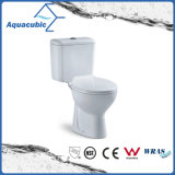 Washdown Tweedelig Ceramisch Toilet in Wit (ACT5223)