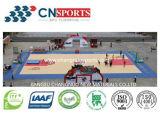 De Bevloering van het Hof van de Sporten van Spu voor de Vloer van het Basketbal met het Mooie Houten Patroon van de Textuur