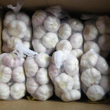 Aglio bianco fresco cinese del nuovo raccolto di buona qualità