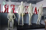معياريّة أوروبا حجم يشبع ذكريّ رسميّة لباس عارض الأزياء ([غس-دم-002ك])