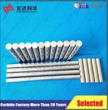 Tube solide de carbure de tungstène de qualité de longue extrusion