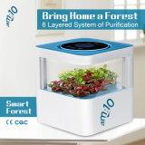 Современный дизайн Plant-Based очиститель воздуха с фильтром HEPA, негативные ионного генератора.