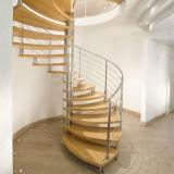 De Spiraalvormige BinnenTrap van uitstekende kwaliteit van het Traliewerk van het Roestvrij staal van het Ontwerp van Treden voor Verkoop