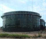 Biogas 소화자 3*3000m3 Cstr 반응기