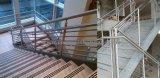 Pasamano de acero de la escalera de la escalera de la barandilla de la buena calidad y del precio de fábrica