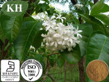 100% natürlicher Holarrhena Antidysenterica Auszug-/Bitter-Oleander-Auszug