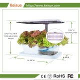 Smart Office Table dressée Micro plantes croissant Farm