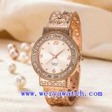 Reloj de señoras conocido de encargo del acero inoxidable del ODM del reloj (WY-G17007B)