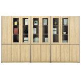 Krankenhaus-Aktenschrank-hohe Bücherschrank-Büro-Möbel