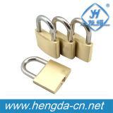 Yh1635 minuscule serrures à clé Boîte Mini Cadenas en laiton solide avec 2 clés
