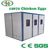 Incubateur automatique d'oeufs de poulet d'occasion approuvé par Ce approuvé