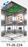 Toyon - ascenseur d'observation/levage d'ascenseur/levage de passager ascenseur de passager pour le film publicitaire