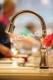 Badezimmer-Hähne/Hähne/Dusche-Kopf/Brassware PVD Titanbeschichtung-Gerät