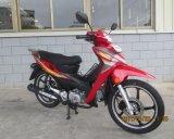 50cc/110cc tipo Moto/motociclo (SL110-4A) del Cub Honda del nuovo modello
