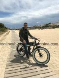 48V 의 250/500W/750W 포도 수확 함 E 자전거 또는 고전적인 함 전기 자전거 또는 바닷가 함 전기 뚱뚱한 자전거 또는 향수 뚱뚱한 Pedelec 또는 Retro Pedelec에 의하여 숨겨지는 건전지