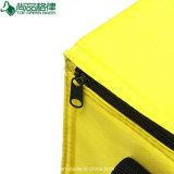 Le refroidisseur à la mode de créateur met en sac le sac campant de refroidissement de pique-nique de sac d'épaule