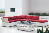 Напольная мебель с плоской софой сада мебели ротанга PE (TG-005)
