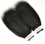 Бразильский Kinky Прямые заготовки Виргинских для волос (Категория 9A)